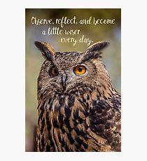 Eurasian Eagle Owl Wisdom Photographic Print