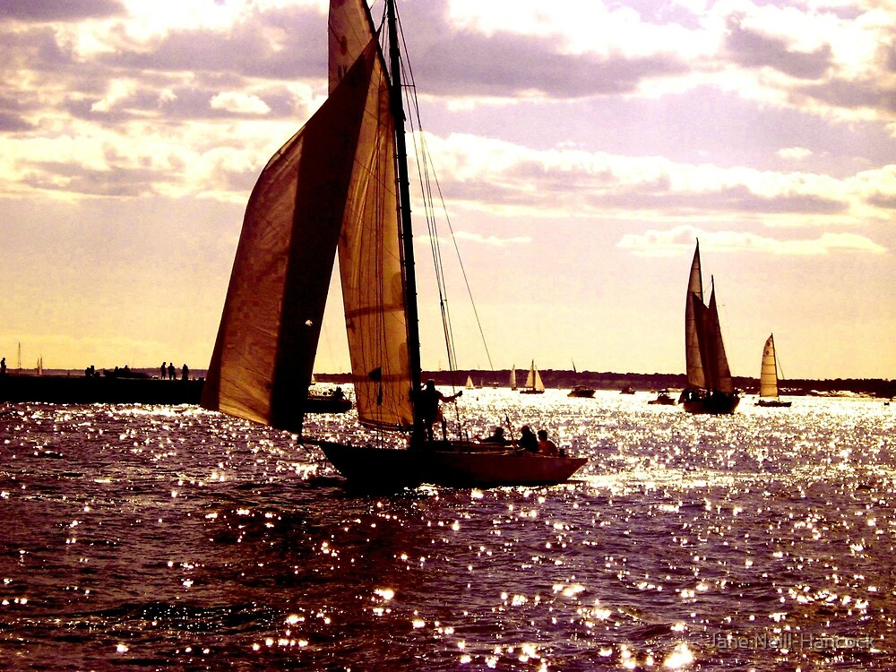 Warm Lilac Day - Sailboat Silhouette on Sparkling Waters by Jane Neill-Hancock