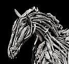 Stallion  by Alex Preiss