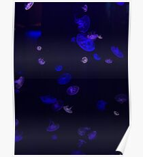 Neon Blue & Purple Glowing Jellyfish Poster