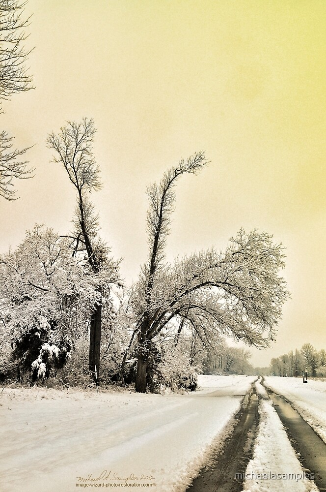 Southern Illinois Winter Scene 9_ Dec 2012 by michaelasamples