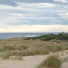 Evening Beach, Lakes Entrance by Virginia McGowan