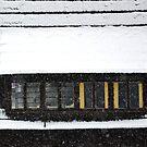 Snowfall by Arie Koene