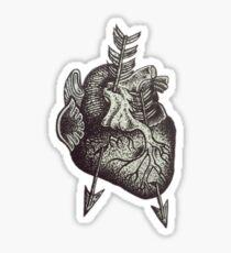 Dot Work Anatomical Heart  Sticker
