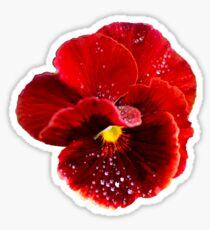 Red Pansy Sticker