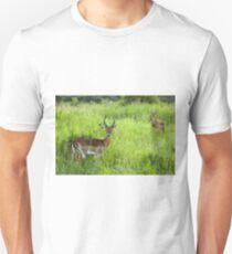 Antelope Tanzania T-Shirt