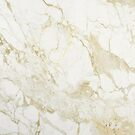 Pure Gold White Marble by Annelise Dominello