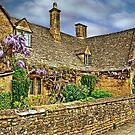 Wisteria Cottage by John Edwards