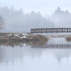 Wetland Foot Bridge by Randy Richards