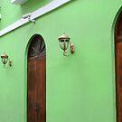 Verde by Paula Bielnicka