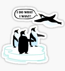 I Do What I Want T-shirt Cool Flying Penguin Tshirt Sticker