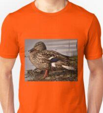 Mallard Duck by the Water T-Shirt