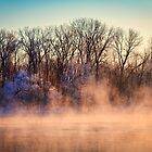 Fog and Frost on the Wisconsin River 2017-1 by Thomas Young