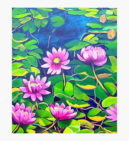 Waterlillies in Japanese Gardens Photographic Print