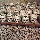 Skull & Bones in Hallstatt by Christine  Wilson
