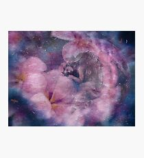 Angelic dreams & cosmic pink clouds Photographic Print