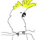 cockatoo by Matt Mawson