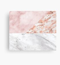 Mixed pinks rose gold marble Canvas Print