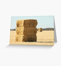 Needle in a Haystack Greeting Card
