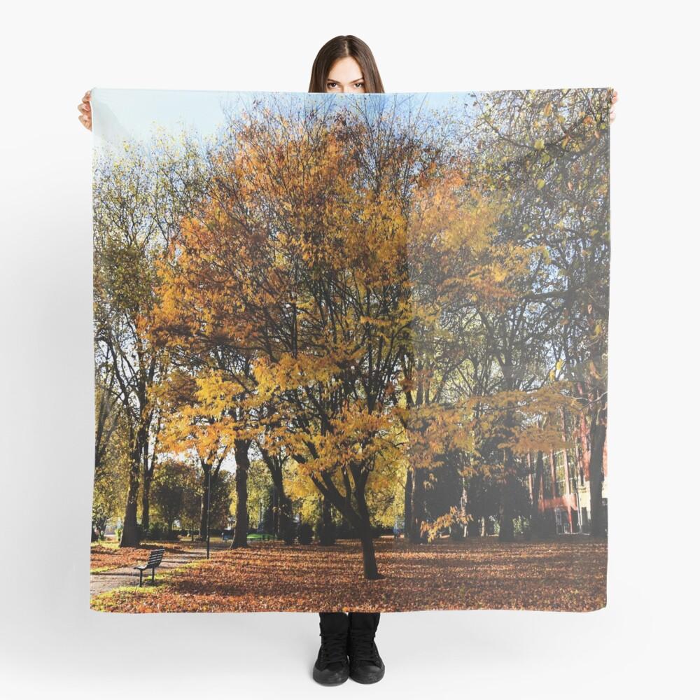 Autumnal scene Scarf