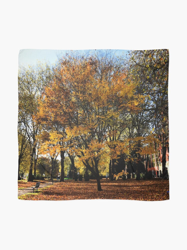 Alternate view of Autumnal scene Scarf