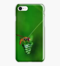 Small Fly iPhone Case/Skin