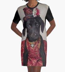 Shelter Pets Project - Shadow Graphic T-Shirt Dress