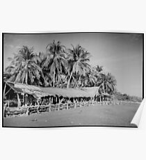 Palm Trees on Tropical Beach Shot on Black and White Film Poster