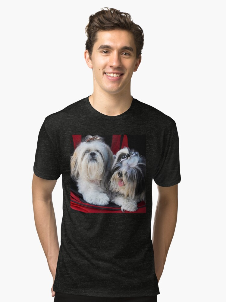 Two Cute!! Tri-blend T-Shirt Front