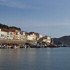 Port Vendres. by Paul Pasco
