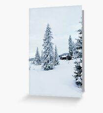 Lonely House in Snow-Covered Scandinavian Winter Landscape (Norway) Greeting Card