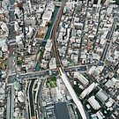 Japan - Aerial View of Central Tokyo by visualspectrum