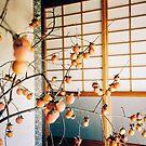 Persimmon Branches Ikebana Shot on Porta 400 Shot on Porta 400 by visualspectrum