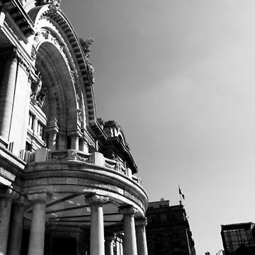 Bellas Artes by brendacv
