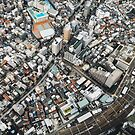 Tokyo Cityscape From Above by visualspectrum