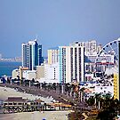 Myrtle Beach Grand Strand by Darlene Lankford Honeycutt