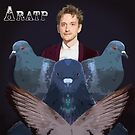 A Robins Amongst The Pigeons by Rumdo