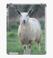 Countryside walks iPad Case/Skin