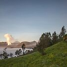 Tengger Caldera with Mount BromoTengger Caldera, Mount Bromo, volcano, steam, grass, green, Asia, Indonesia, Java, mountains by SinaStraub