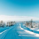 Blue Scandinavian Winter Landscape With Mysterious Fog on Sunny Cold Day by visualspectrum