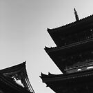 Roofs of Japanese Pagoda in Black and White by visualspectrum