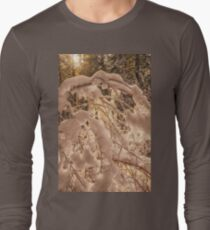 Backlighting sun shines behind snow covered branches Long Sleeve T-Shirt