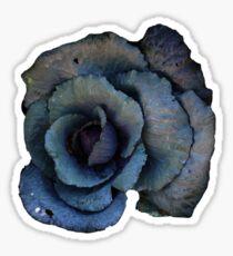 Blue Rose Cabbage Sticker  Sticker