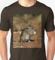 Striped Grass Mouse (Rhabdomys pumilio) T-Shirt