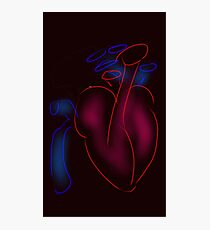 Heart and Great Vessels Cartoon Photographic Print