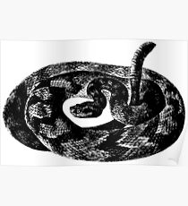 Black and White Snake Poster