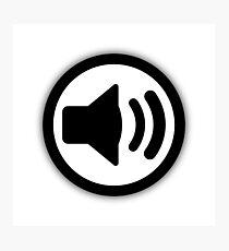 Audio Speaker Photographic Print