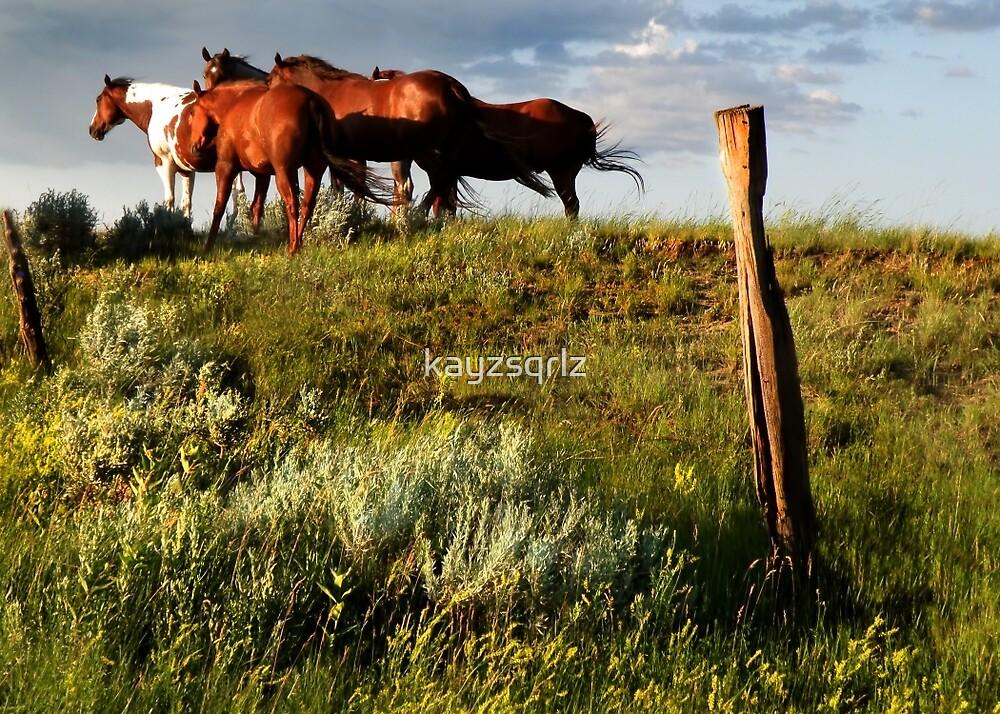 Copper Horses by kayzsqrlz