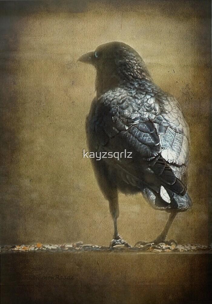 Ravens and Robins' Seeds by kayzsqrlz