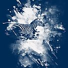 zebra splashed  by frederic levy-hadida